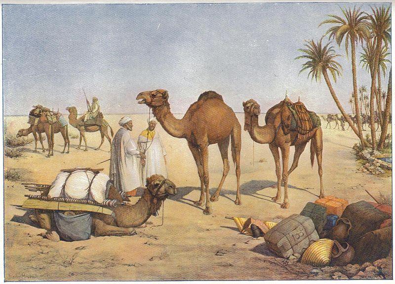 החיים במדבר - קבלת התורה